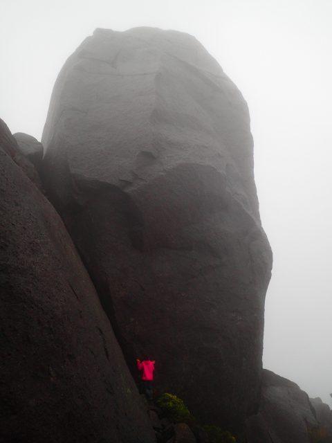 太忠岳 登山 ガイドツアー