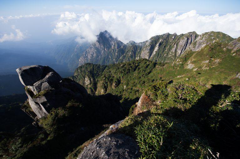 屋久島の最奥部を探検