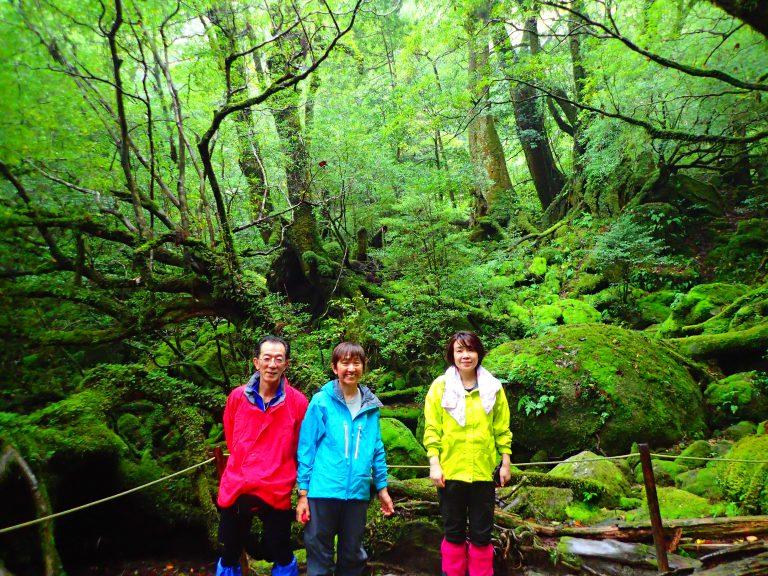 白谷雲水峡(苔むす森)トレッキングツアーの旅!